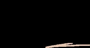 fotografia slubna tomalka pawel logo - Oferta